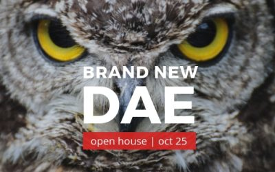 Join Us For Our Brand New DAE Open House Oct 25.